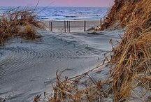 Nature - Beach