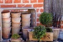 Gardening / Stockton, IL and Galena, IL