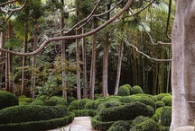 Gardens that r amazing