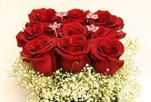 Valentine's Day / Stockton, IL and Galena, IL