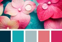 All about Palette ~ / Color Paletts, Theory of Color, and much more about it.