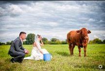 PlenerSlubny / Zdjęcia wykonane podczas pleneru ślubnego