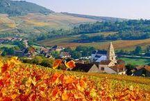 Voyage en France - Bourgogne Franche-Comté