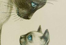 Drawings / Interesting drawings