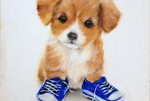 Cute animals / Cute!