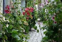 Gardens and outdoor pleasures