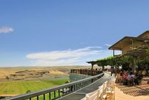 Live Music On The Terrace / by Maryhill Winery