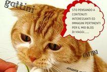 GattiniGattiniTravel / Gattini per la felicità dei travelblogger