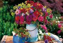 Flower Power ✿ / Rosen, Tulpen, Nelken alle Blumen welken - es sei denn sie verzieren unsere liebsten Dessous ✿