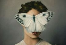 butterfly effect / by Invidiana