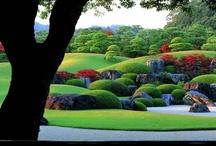 Gardens / Amazing gardens throughout Japan.