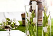 Reception&Decorations etc. / by Andrea Sosa