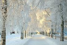 Winter & Wonderland