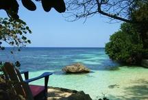 JALife Island Paradise