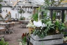 Botanical Gardens in the World / Stunning pictures from botanical gardens all over the world.