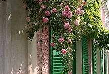 France / Beautiful pictures of France