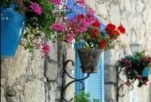 Gorgeous Garden Ideas / A collection of ideas for a beautiful garden. / by Annette Horton