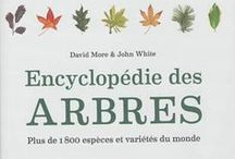 FORESTERIE