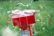 Bikes / Family biking. City biking. Commuter biking. Cargo biking.