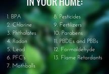 A Healthy Home / How to maintain a healthy home