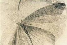 Иллюстрации, рисунки