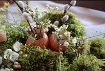 #DIY PAQUES -Z'Ateliers- http://leszetoiles.blogspot.fr - Crédit Photo : La tête dans les Z'étoiles. / La tête dans les Z'étoiles, Blog Inspirant. Décoration, Diy, Inspiration, Event. http://leszetoiles.blogspot.fr #DIY #Atelier #Pâques #Easter
