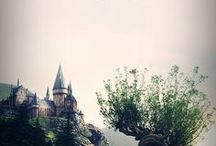 Harry Potter / To Make Your World A Little More Magical