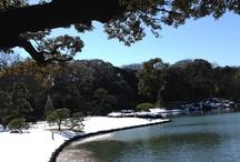 Tokyo -- winter / 東京の冬