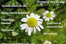 Aromatips / Aromatips voor het simpel gebruik van etherische olie