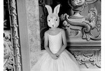 Rabbits  / by Joy