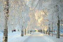 Paysages d'hiver / Paysages d'hiver