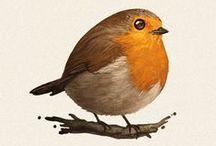 Creature Design | Birds
