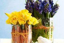 Themes // Spring Has Sprung
