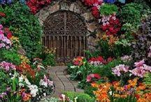 Цветочные композиции / Интересные идеи для украшения сада