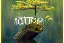 I love nature! / by Chinade Dunstone