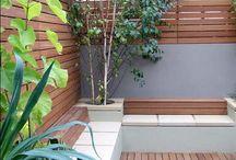 Outside / Garden, outside, nature