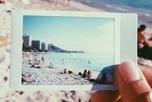 A Snapshot of Summer