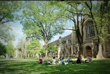 College Campuses  / Some of the coolest, most beautiful colleges around.  / by Admitted.ly