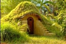 Garden and mini house