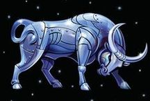 All that bull / Taurus!!!!!!!!!!!!!!!! / by Alissa Petty