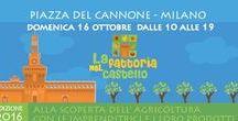 Italia in Festa / Sagre Fiere Feste manifestazioni e Mostre in italia
