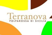 Terranova Arance Siciliane / Terranova Arance Siciliane Agricola Leonardo Natalina  - Via Giovanni Boccaccio, 41 - 95046 Palagonia (CT)