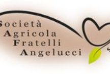Agricola Fratelli Angelucci / Società Agricola FRATELLI ANGELUCCI s.r.l. - Vocabolo San Nicola, 69 - 06033 Cannara loc. Collemancio (PG)