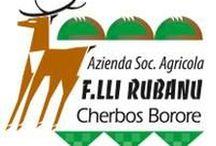 Caseificio Fratelli Rubanu / Caseificio F.lli Rubanu Società Agricola di Giuseppe Rubanu e C. s.s. - Località Cherbos - 08016 Borore (NU)