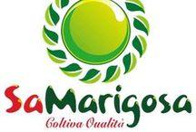 Sa Marigosa / O.P. Sa Marigosa Società Consortile a r.l. - S.P. 7 Km. 5,900 - 09070 Riola Sardo (OR)