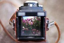 Photography / Amazing moments