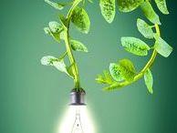 Green Ideas / Going Green 101