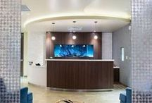 Spa Design / Featured Spa projects by ODSI.
