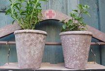 My flowerpots