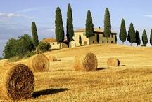 L♥ve Tuscany!